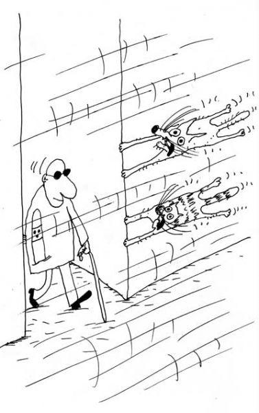 Карикатура: Ветер, Вячеслав Шилов