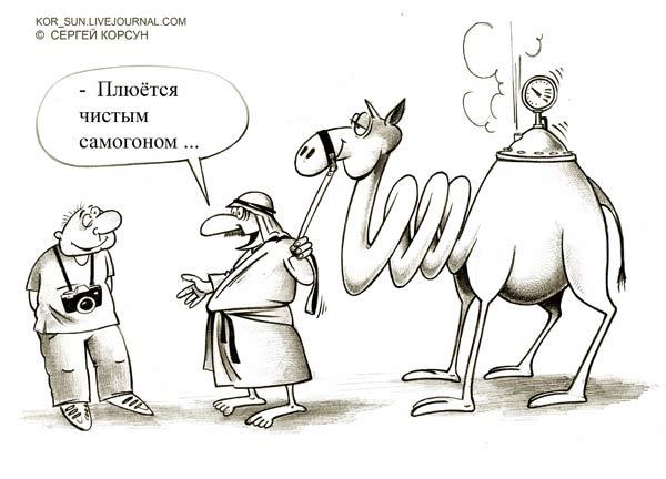 Карикатура: самогонный аппарат, Сергей Корсун