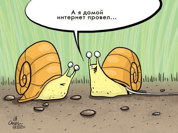 Карикатура: Домашний интернет, Антон Ангел