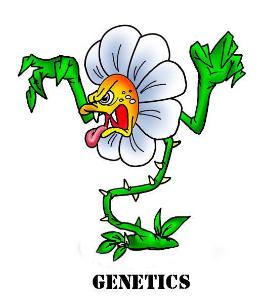 Карикатура: Генетика запада, Эфен Гайдэ