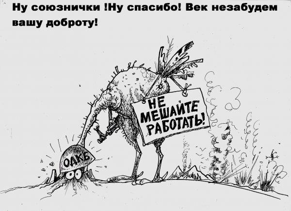 Карикатура: Союзнички, Избасаров Бауржан