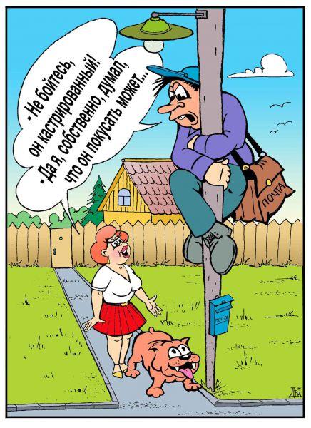 Карикатура: мужчина и женщина... логический вывод., виктор дидюкин