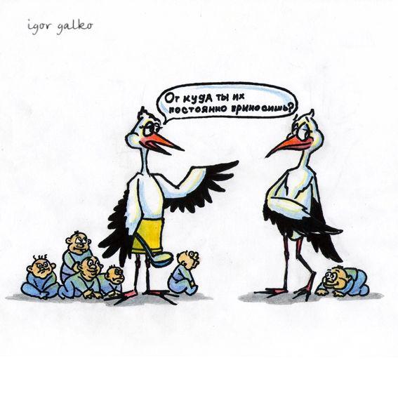 Карикатура: аист, IgorHalko