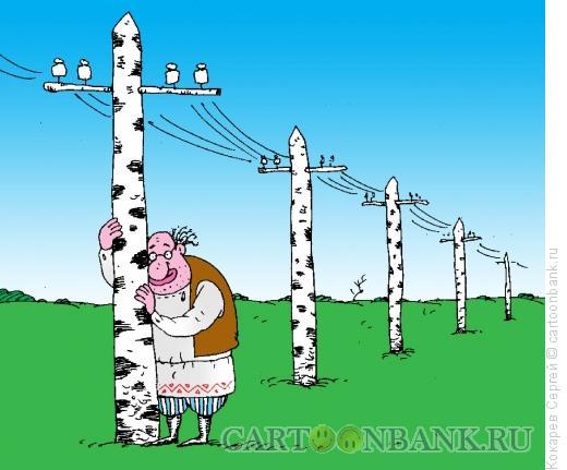 Карикатура: березки, Кокарев Сергей