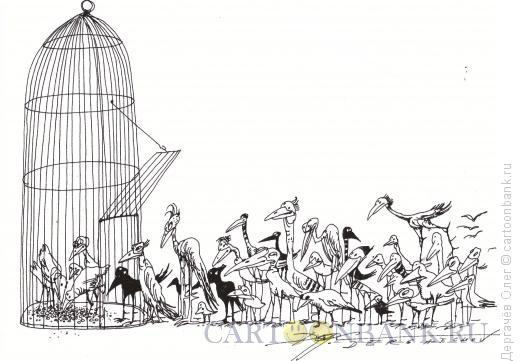Карикатура: Демократия, Дергачёв Олег