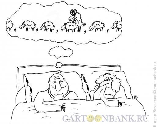 Карикатура: Овцы, Шилов Вячеслав