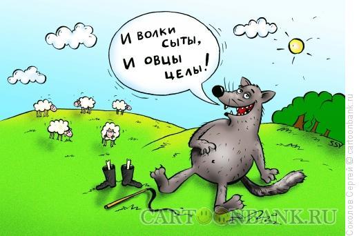 Карикатура: волк и овцы, Соколов Сергей