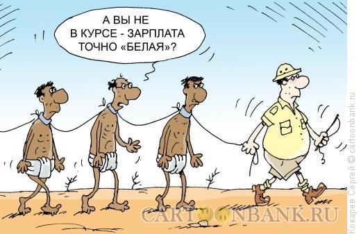Карикатура: белая зарплата, Кокарев Сергей