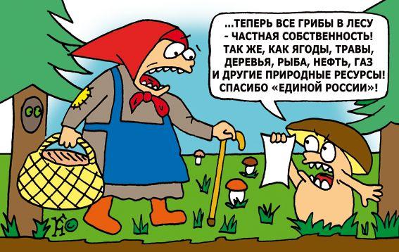 """Карикатура: запрет на сбор грибов от """"Единой России"""", Ганов Константин"""
