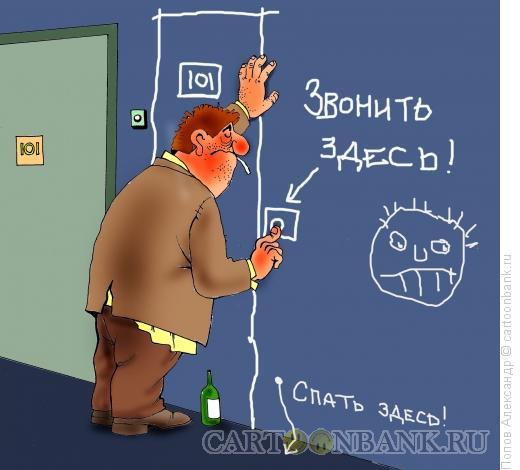 Карикатура: На автопилоте, Попов Александр