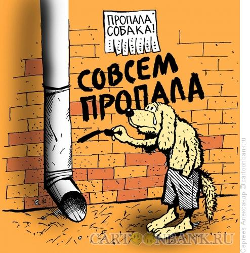 Карикатура: Собака пропала, Сергеев Александр