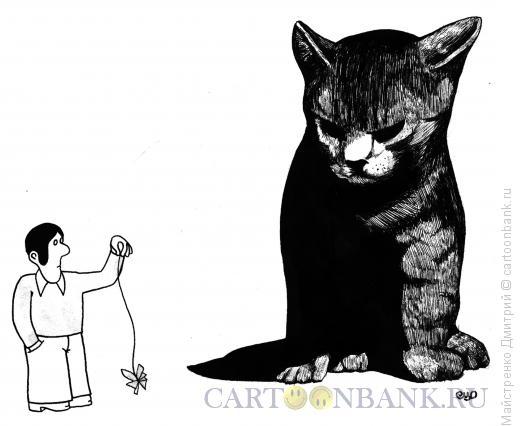 Карикатура: Игра с кошкой, Майстренко Дмитрий