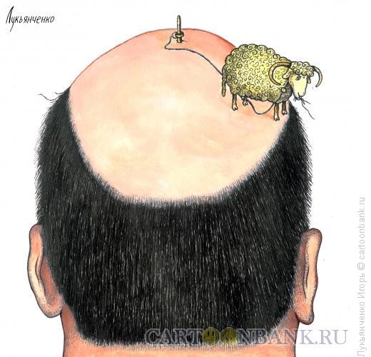 Карикатура: Лысина, Лукьянченко Игорь