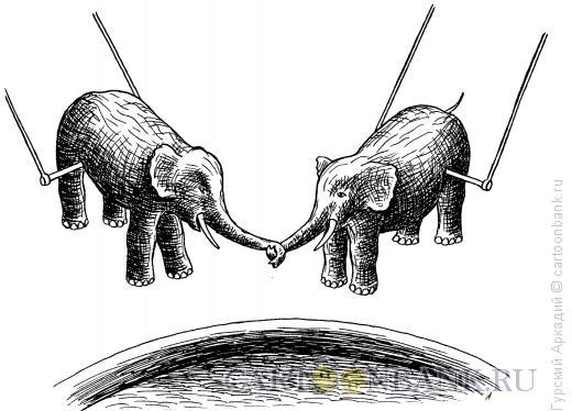 Карикатура: слоны в цирке, Гурский Аркадий