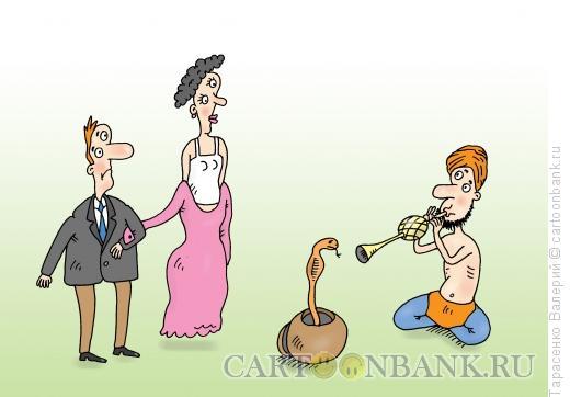 Карикатура: Змеиная мелодия, Тарасенко Валерий