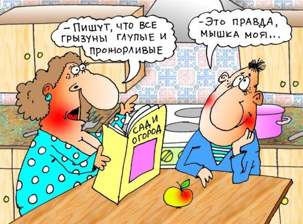 Карикатура: Мышка..., Александр Хорошевский