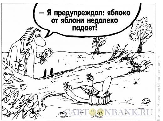 Карикатура: Яблоко и яблоня, Шилов Вячеслав
