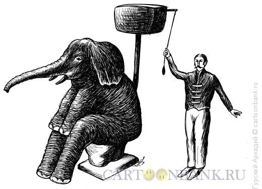 Карикатура: слон на унитазе, Гурский Аркадий