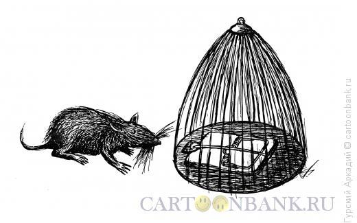 Карикатура: крыса перед клеткой, Гурский Аркадий