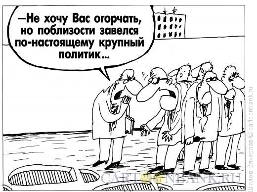 Карикатура: Крупный политик, Шилов Вячеслав
