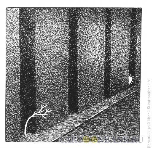 Карикатура: дерево  солнце и дома, Копельницкий Игорь