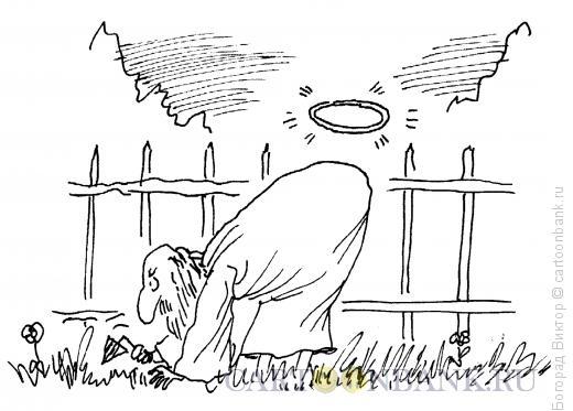 Карикатура: Святой на грядках, Богорад Виктор