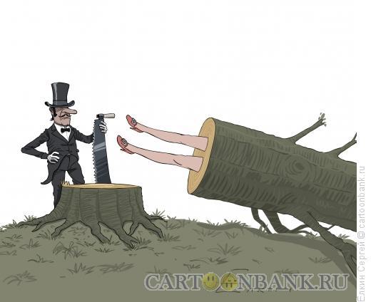 Карикатура: Факир-лесоруб, Ёлкин Сергей