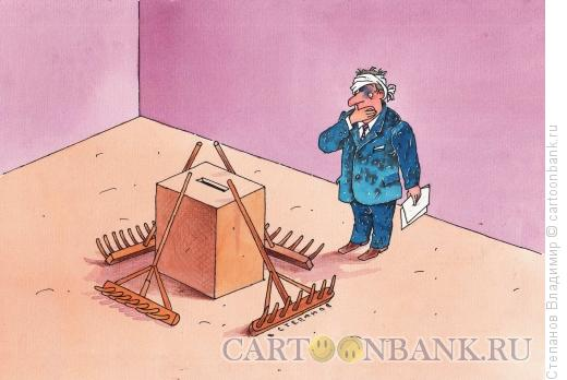 Карикатура: Выборы, Степанов Владимир