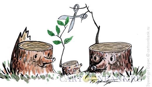 Карикатура: Веточка, Эренбург Борис