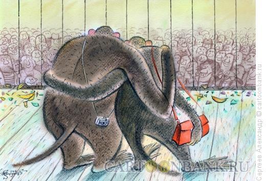 Карикатура: Посетители в зоопарке, Сергеев Александр