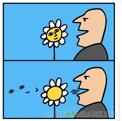 Карикатура: цветок как лицо, Копельницкий Игорь