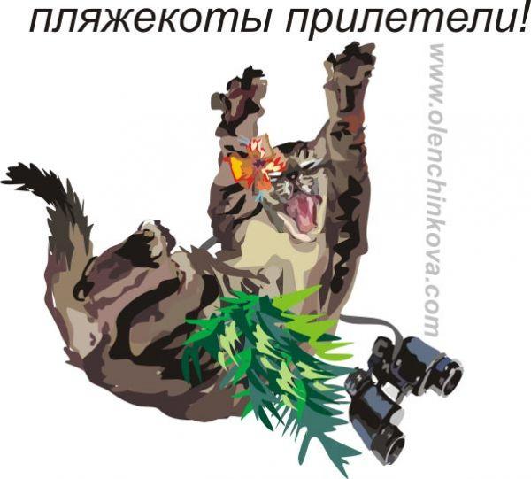Карикатура: пляжный кот, olenchinkova