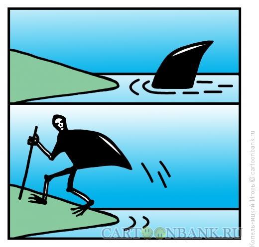 Карикатура Акула на земле, Копельницкий Игорь