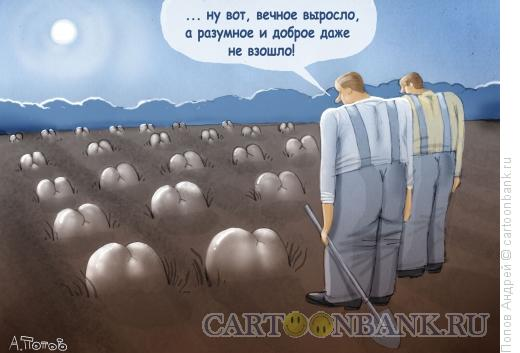 Карикатура Разумное, Доброе, ВЕЧНОЕ, Попов Андрей
