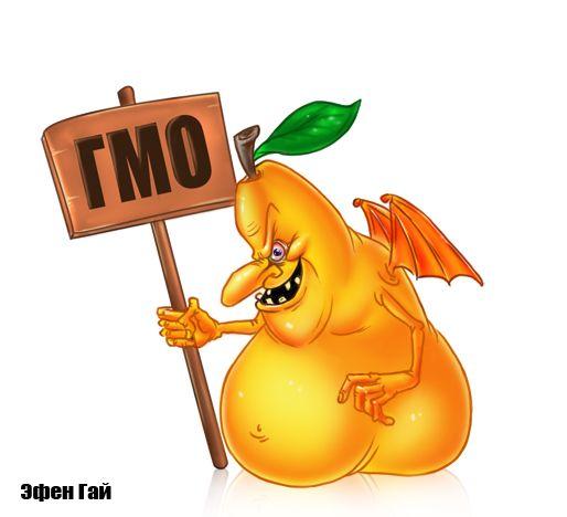 Карикатура: Карикатура ГМО, Эфен Гайдэ