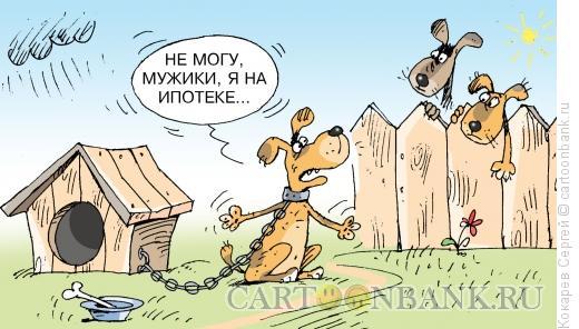 http://www.anekdot.ru/i/caricatures/normal/11/7/17/na-ipoteke.jpg