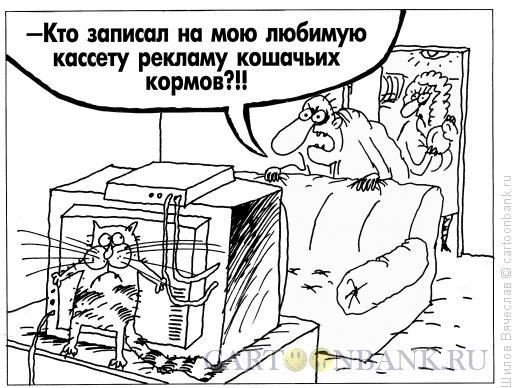 Карикатура: Кот, Шилов Вячеслав