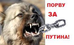 """Карикатура: Цикл """"Порву за Путина!"""", Кролик"""