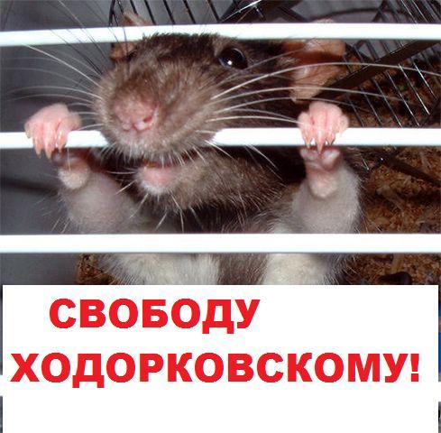 Карикатура: Свободу!, Кролик