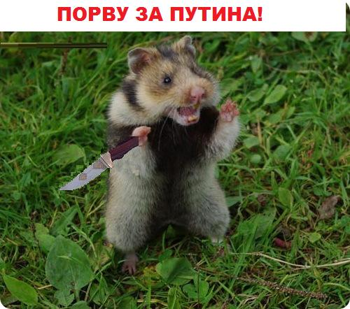 Карикатура: За Путина, Кролик