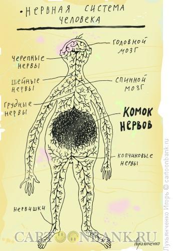 Карикатура: Комок нервов, Лукьянченко Игорь