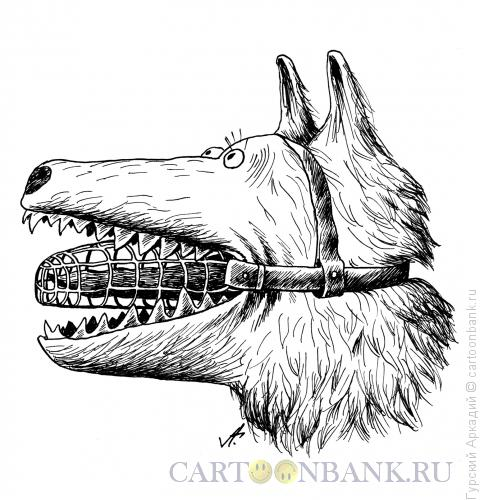 Карикатура: собака с намордником, Гурский Аркадий