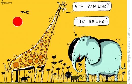 Карикатура: Встреча, Лукьянченко Игорь