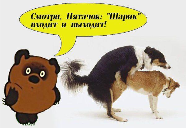 Карикатура: Винни-Пух и Шарик, Сергей Ивановский