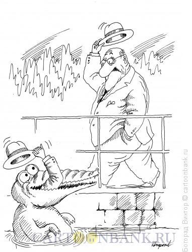 Карикатура: Встреча в зоопарке, Богорад Виктор