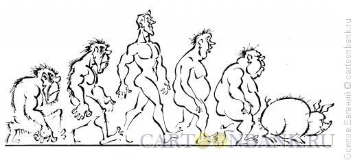 Карикатура: эволюция, Осипов Евгений