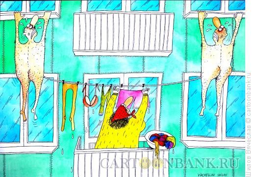 Карикатура: Бельё и любовники, Шилов Вячеслав