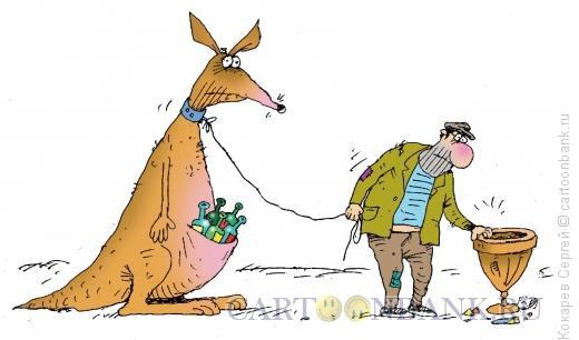 Карикатура: Кенгуру, Кокарев Сергей
