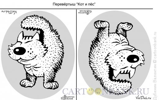 Карикатура: Кот и пёс, Дубинин Валентин