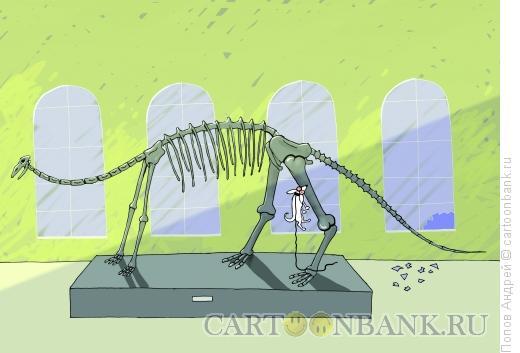 Карикатура: Охота, Попов Андрей